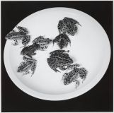 Frogs 1984 Robert Mapplethorpe 1946-1989 ARTIST ROOMS  Acquired jointly with the National Galleries of Scotland through The d'Offay Donation with assistance from the National Heritage Memorial Fund and the Art Fund 2008 http://www.tate.org.uk/art/work/AR00221